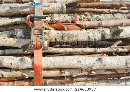 Cut Wood as Renewable Resource of Energy with Industrial Strap - stock photo