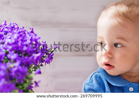 Cute baby boy looking at bellflowers, selective focus - stock photo