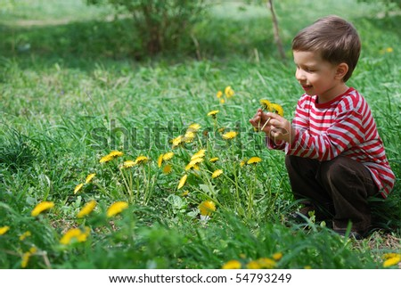 Cute baby boy looks at the dandelion flower - stock photo