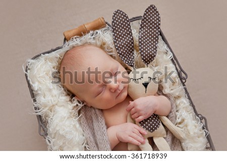 Cute baby boy with rabbit toy posing in basket