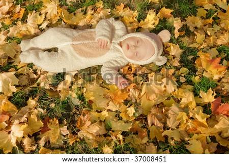 cute baby dressed in fancy dress like little bear, sleeping on yellow autumn leaves - stock photo