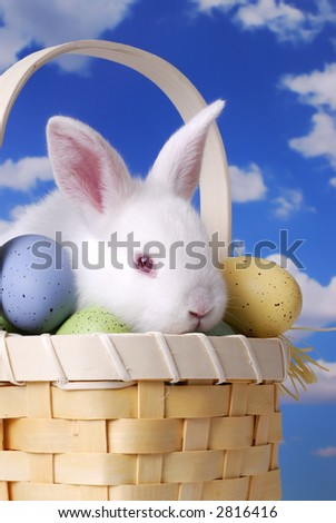 Cute Baby Easter Bunny Sitting in a Basket with Decorated Eggs - stock photo
