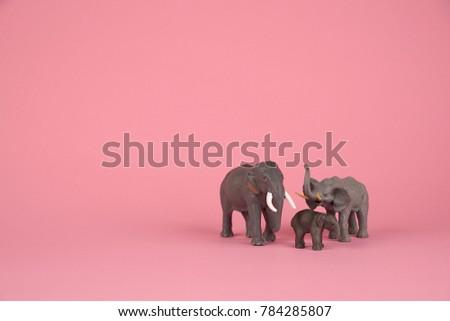 Cute Baby Elephant Mom Dad On Stock Photo & Image (Royalty-Free ...