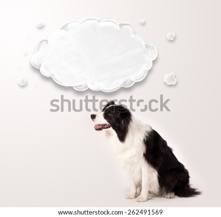 Cute black and white border collie with empty cloud above her head - stock photo
