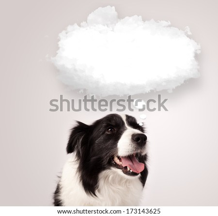 Cute black and white border collie with empty cloud bubble above her head - stock photo