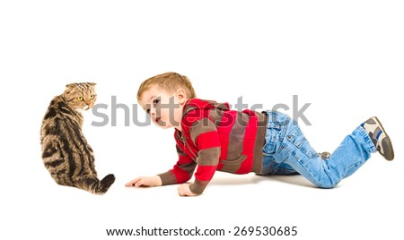 Cute boy looking at Scottish Fold cat isolated on white background - stock photo