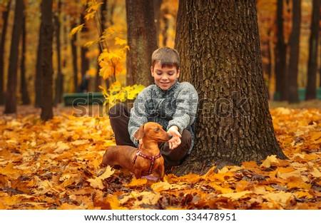 Cute boy, sitting near tree trunk in the autumn park, with dog (dachshund). - stock photo