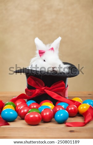 Cute but grumpy easter bunny sitting in magician hat with colorful dyed eggs - stock photo