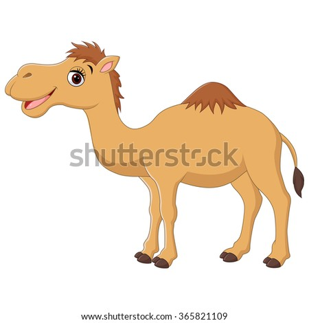 camel cartoon stock images royaltyfree images amp vectors