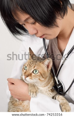Cute cat holding by animal doctor woman of Asian, half length closeup portrait on white background.