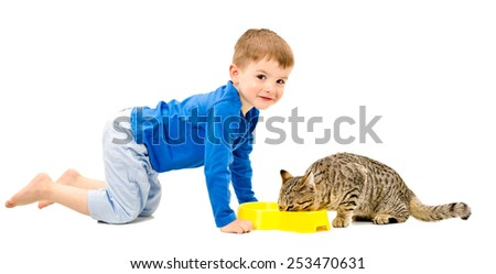 Cute cheerful boy and the cat who eats isolated on white background - stock photo
