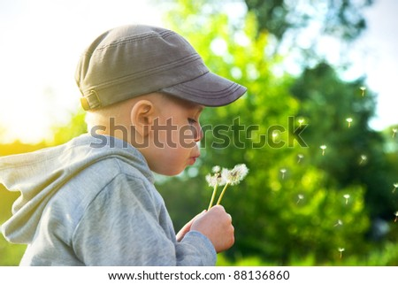 Cute child blowing dandelion in a sunny spring day stock photo