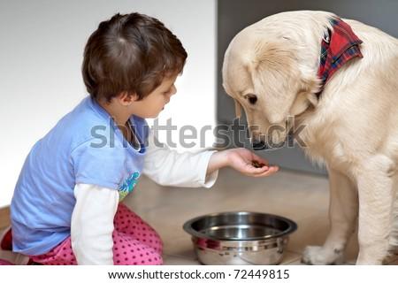 Cute child feeding his pet dog - stock photo