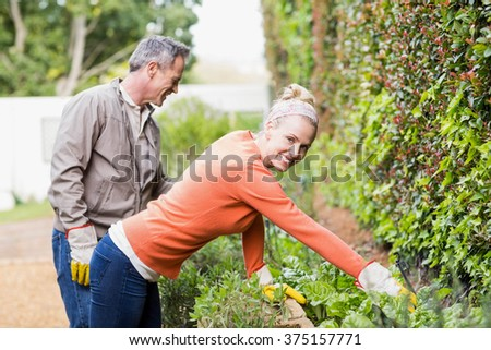 Cute couple doing some gardening in the garden