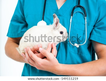 cute doctor veterenarii in the green uniform with a rabbit in his hands - stock photo
