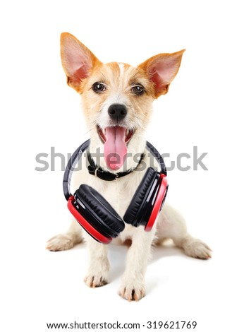 Cute dog with headphones isolated on white