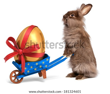 Cute Easter bunny rabbit with a little blue wheelbarrow and a golden Easter egg with a red ribbon, isolated on white, CG and photo - stock photo