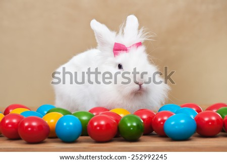 Cute easter bunny sitting among colorful eggs - on golden background- shallow depth of field - stock photo