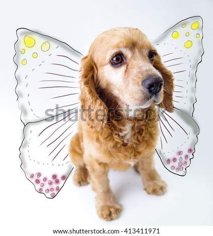 Cute English Cocker Spaniel puppy in front of a white background with butterfly wings sketch - stock photo