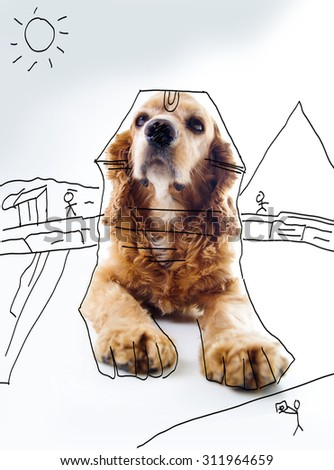 Cute English Cocker Spaniel puppy in front of a white background with house sketch. - stock photo