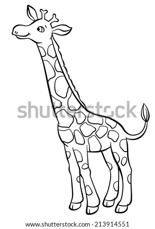 Giraffe Outline Stock Images Royalty Free Images