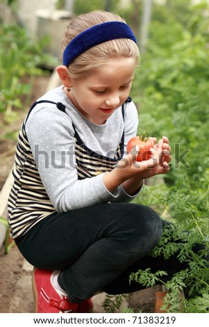 Cute girl holding the first tomato from the harvest - stock photo