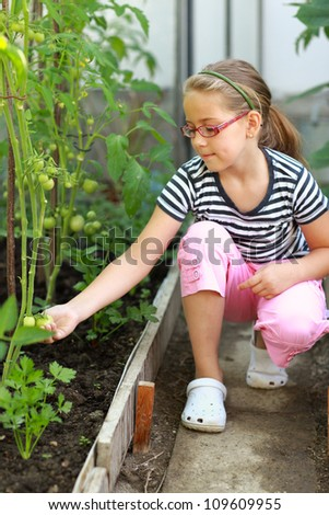 Cute girl in the hothouse holding tomatoes - stock photo