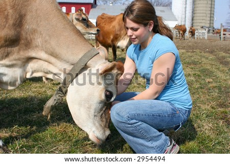 Cute girl petting a cow - stock photo