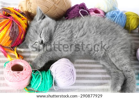 Cute gray kitten with colorful balls of thread on striped carpet, closeup - stock photo