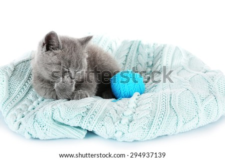 Cute gray kitten with skein  of thread isolated on white - stock photo