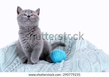 Cute gray kitten with skein of thread on plaid isolated on white - stock photo