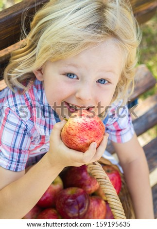 Cute happy child with a basket of delicious red apples outdoors. - stock photo