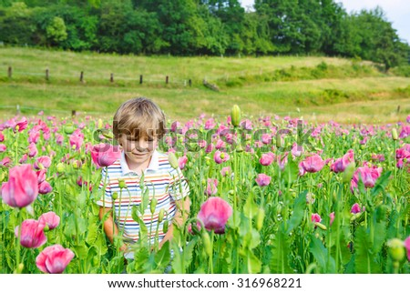 Cute happy little blond child in blooming poppy field with pink flowers. Smiling boy. Active leisure with kids in summer, on sunny warm day, outdoors. - stock photo