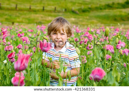 Cute happy little kid boy in blooming poppy field with pink flowers. Smiling child. Active leisure with kids in summer, on sunny warm day, outdoors.