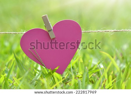 Cute heart Card hanging on the clothesline - stock photo