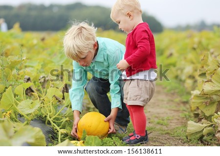 Cute kids, brother, teen boy, with his little sister, lovely baby girl, are picking together ripe yellow pumpkin from vegetable field on a farm - stock photo