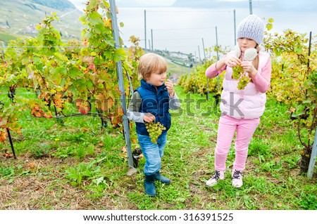 Cute kids eating white grapes in Lavaux vineyards, Switzerland