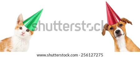 Cute kitten and puppy wearing party hats peeking out from the side of a white banner with room for text - stock photo