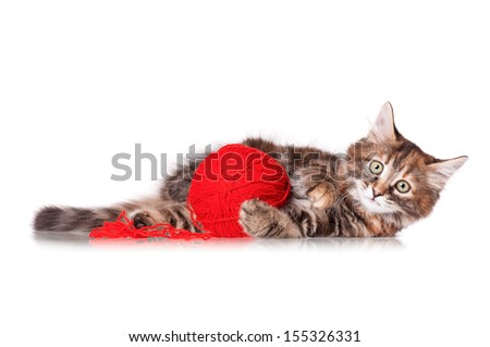 Cute kitten playing red clew of thread, isolated on white background  - stock photo