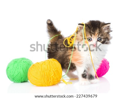 Cute kitten playing with clews of thread. isolated on white background - stock photo