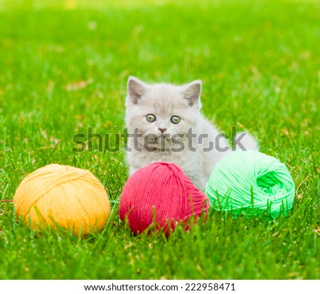 Cute kitten playing with clews of thread on green grass - stock photo