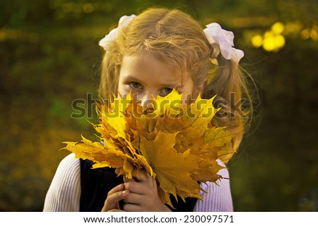 Cute little beautiful girl holding bouquet of autumn maple leaves. Close-up. Adorable smiling kid with two blond ponytail, outdoor autumn portrait in park. - stock photo