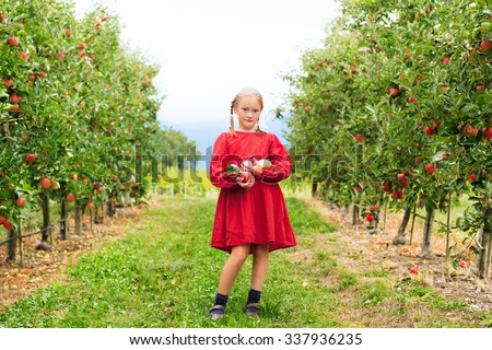 Cute little blond girl playing in apple orchard in early autumn - stock photo
