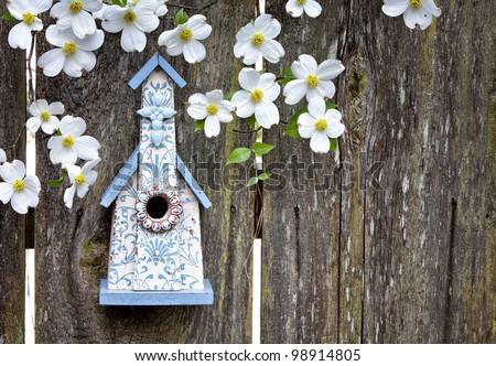 Cute little blue and white church birdhouse on rustic wooden fence with beautiful Dogwood blooms on them - stock photo