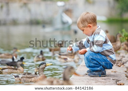 Cute little boy feeding ducks in the pond in a city park. Germany