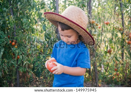 Cute little boy holding tomato - stock photo