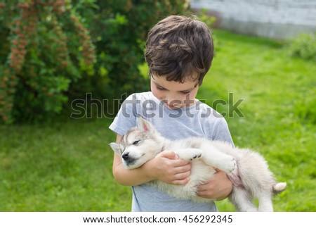 Cute little boy holds on a hands a sleeping husky puppy - stock photo