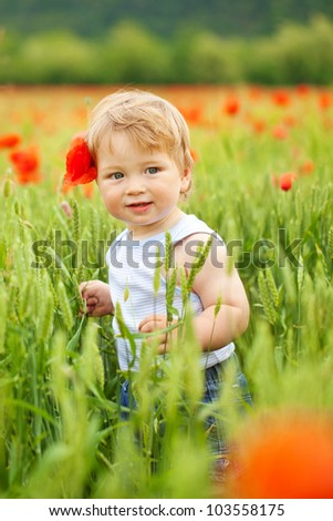 Cute little boy in poppy field