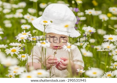 Cute little boy in the lawn with camomiles examining one of them - stock photo