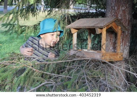cute little boy near the bird feeder